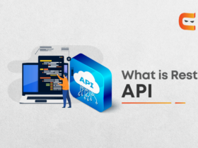 Learn what is rest API in 10 minutes