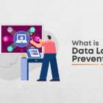 What are the latest Data Loss prevention techniques?