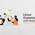 Linux Commands with Examples & Syntax: You Should Know