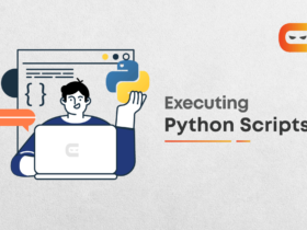 How To Execute Python Scripts?